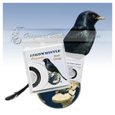 Bird Whistle - Black Drongo