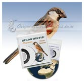 Bird Whistle - House Sparrow